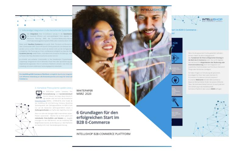 6-Grundlagen-für-Ihren-Erfolgreichen-Start-In-B2B-E-Commerce