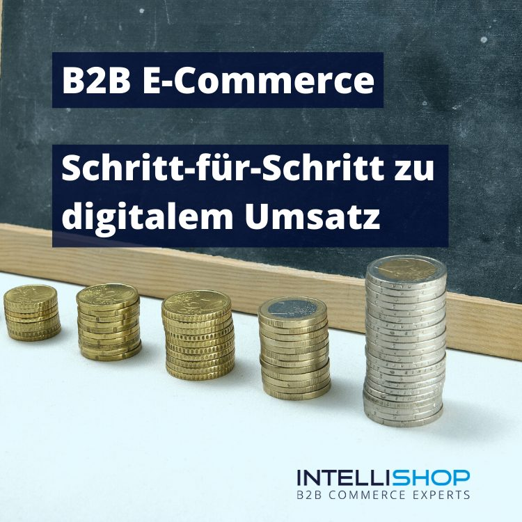 webinar b2b e-commerce