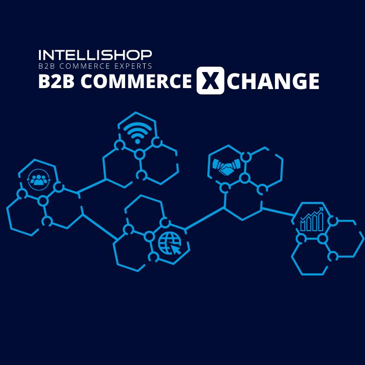 """Vernetzte Waben mit Schriftzug """"IntelliShop B2B Commerce XChange"""""""