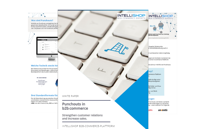 Whitepaper about punchouts in b2b commerce