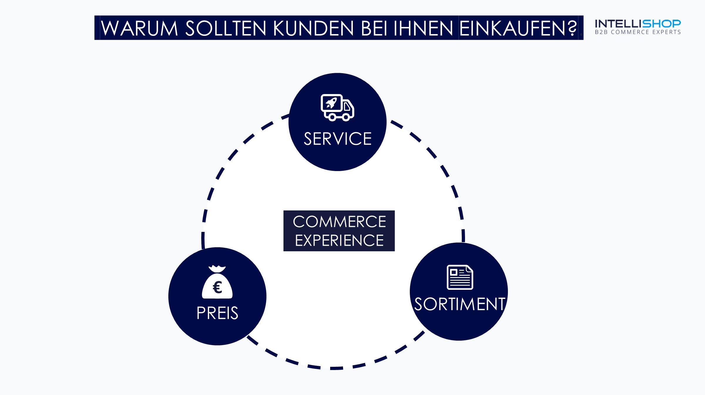 B2B Commerce Experience